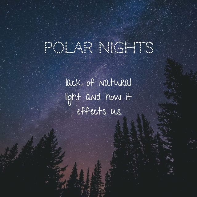 POLAR NIGHTS.png
