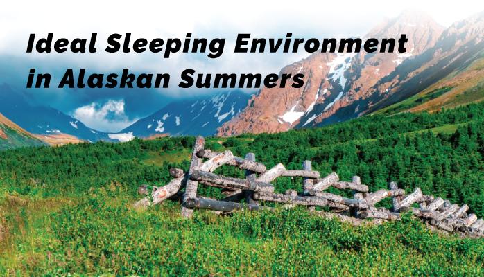 11-Ideal-Sleeping-Environment-in-Alaskan-Summers